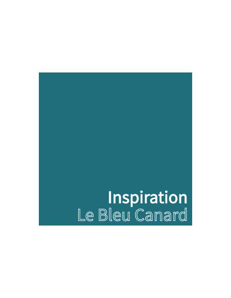 Le Bleu Canard